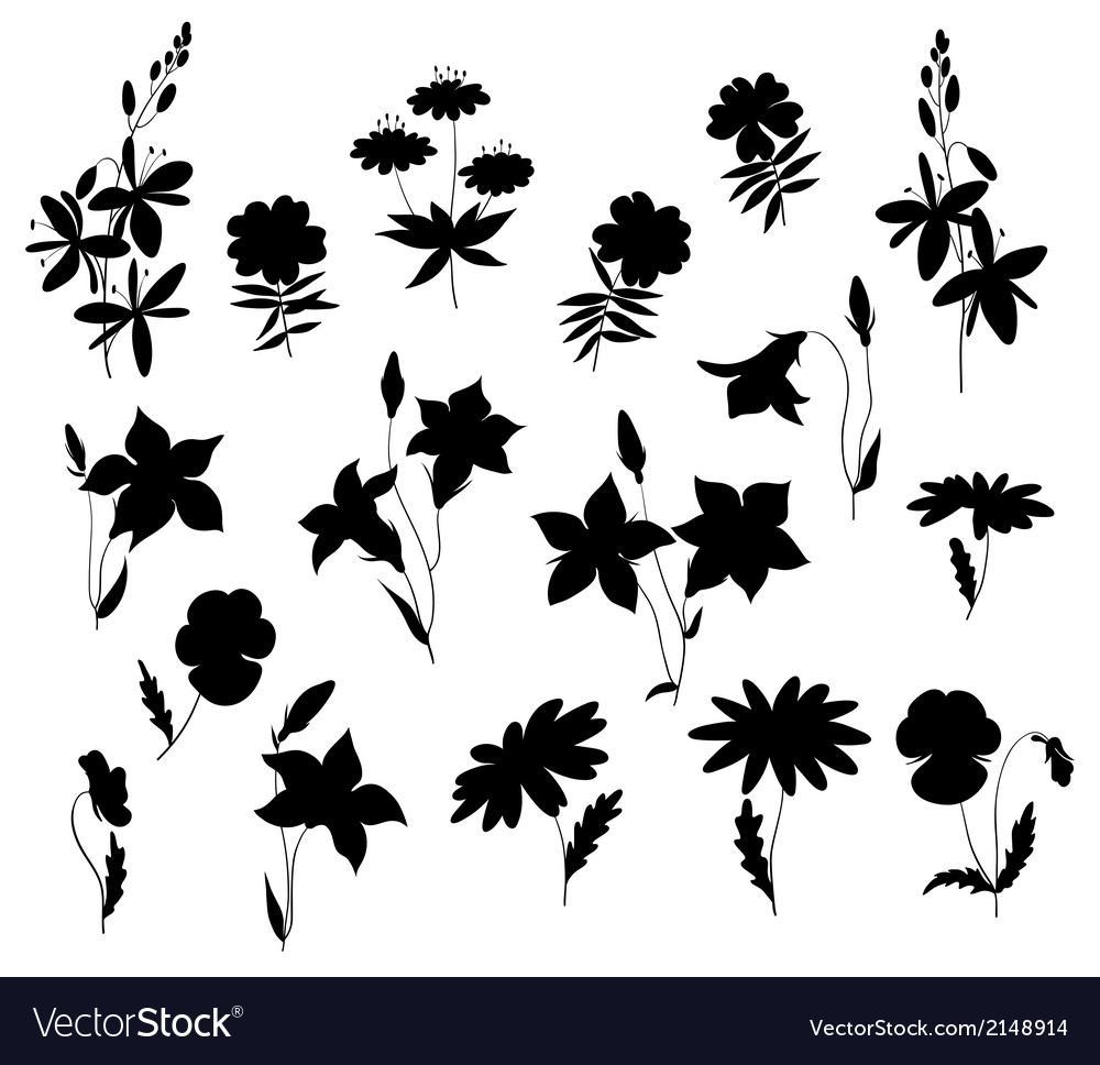 Silhouettes of wild flowers vector