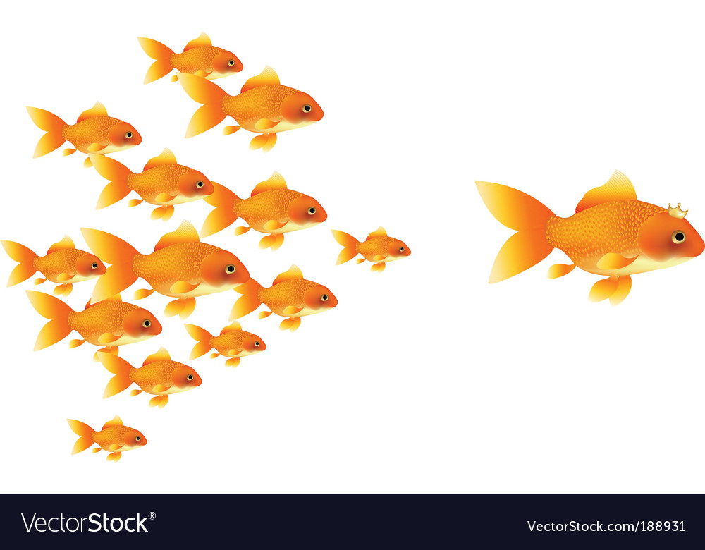 Goldfishes vector