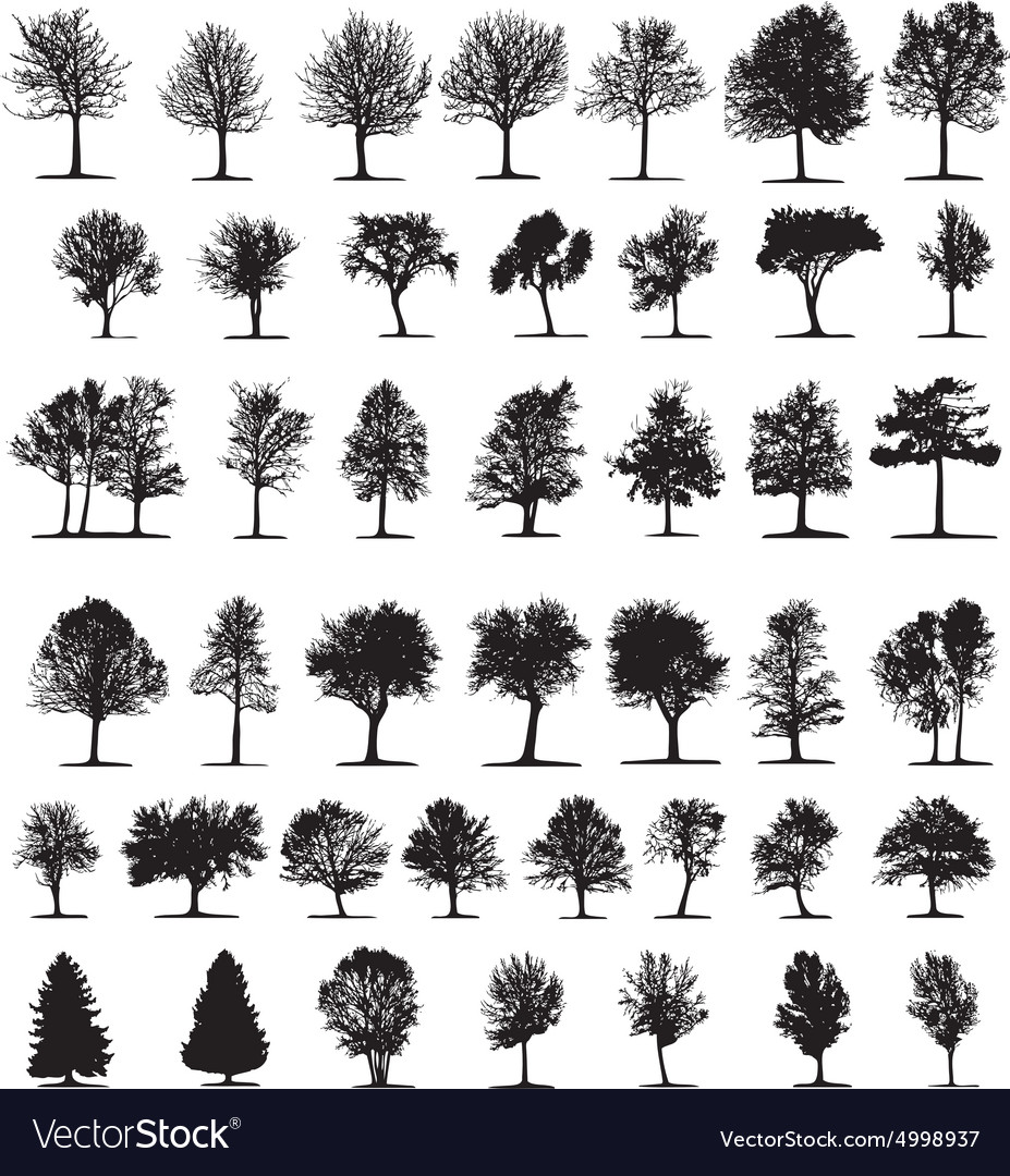 Silhouette of trees vector