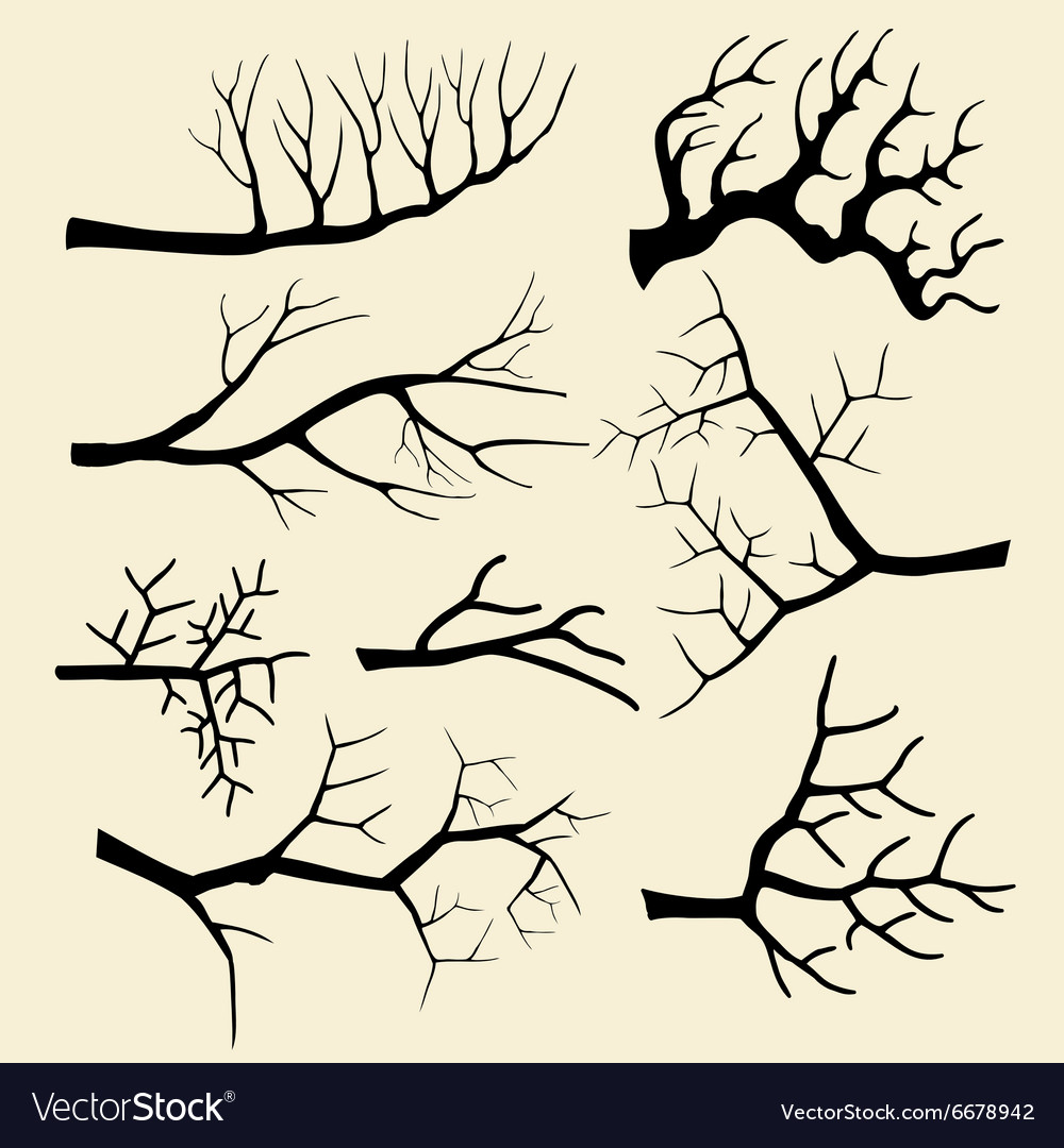 Tree branches set in hand drawn style vector