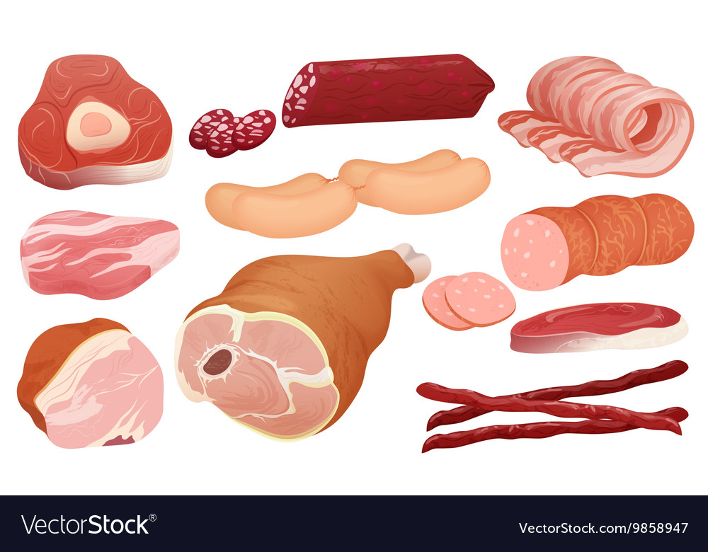 Different kinds of meat collection pork meat vector