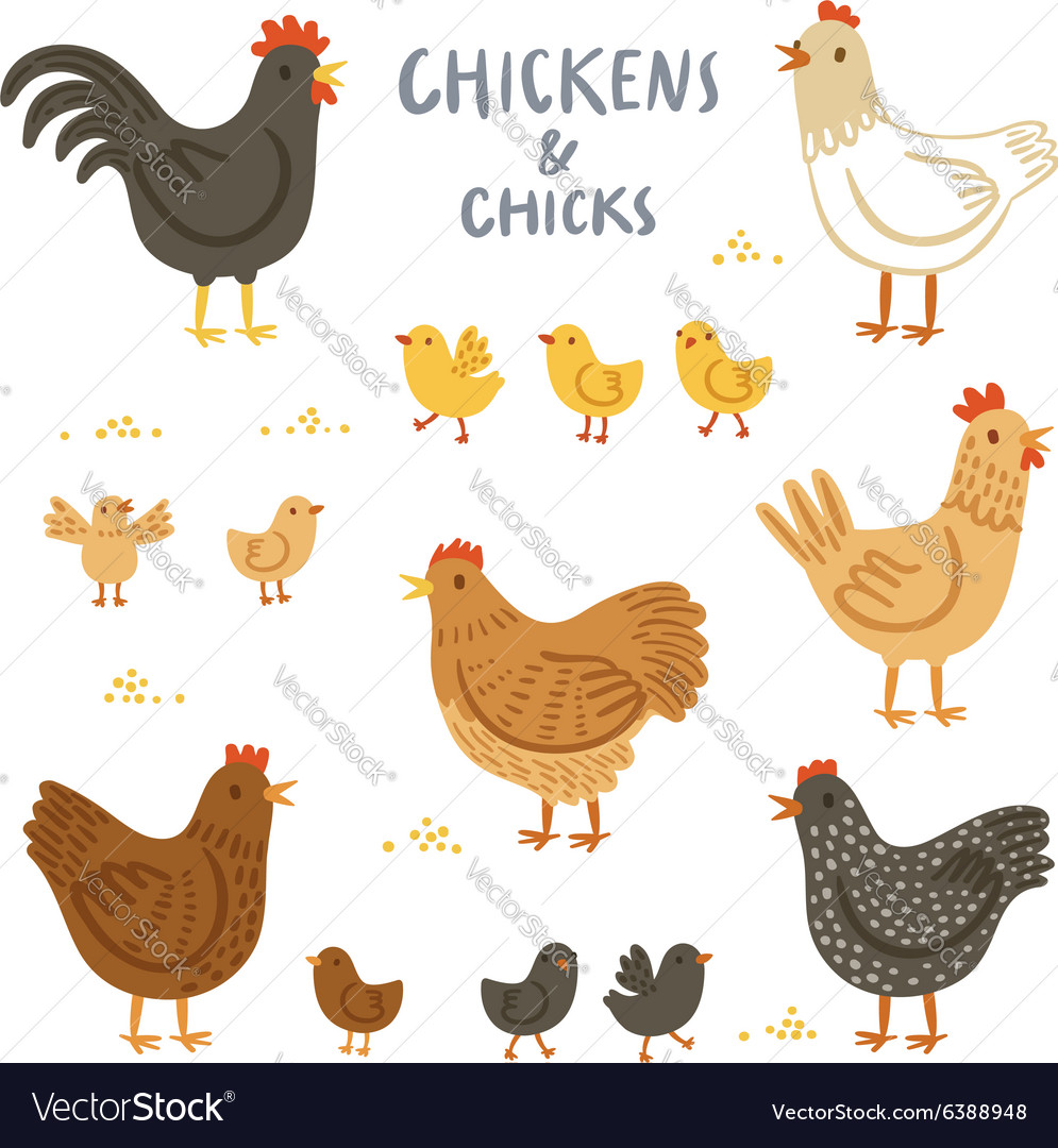 Chickens and chicks set vector