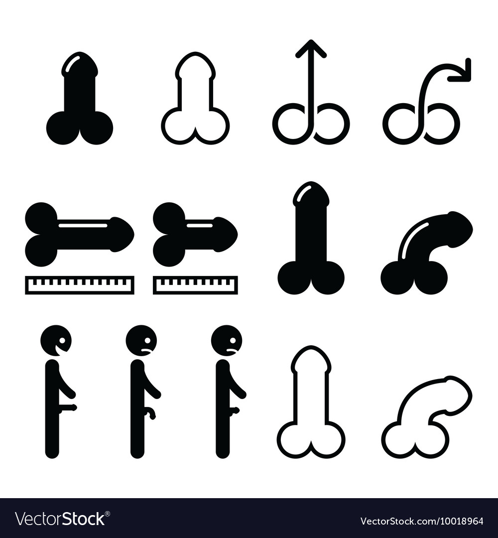 Body part  penis size penis erected impotence i vector