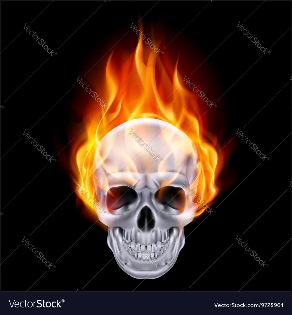 Chrome metal fair skull 01 vector