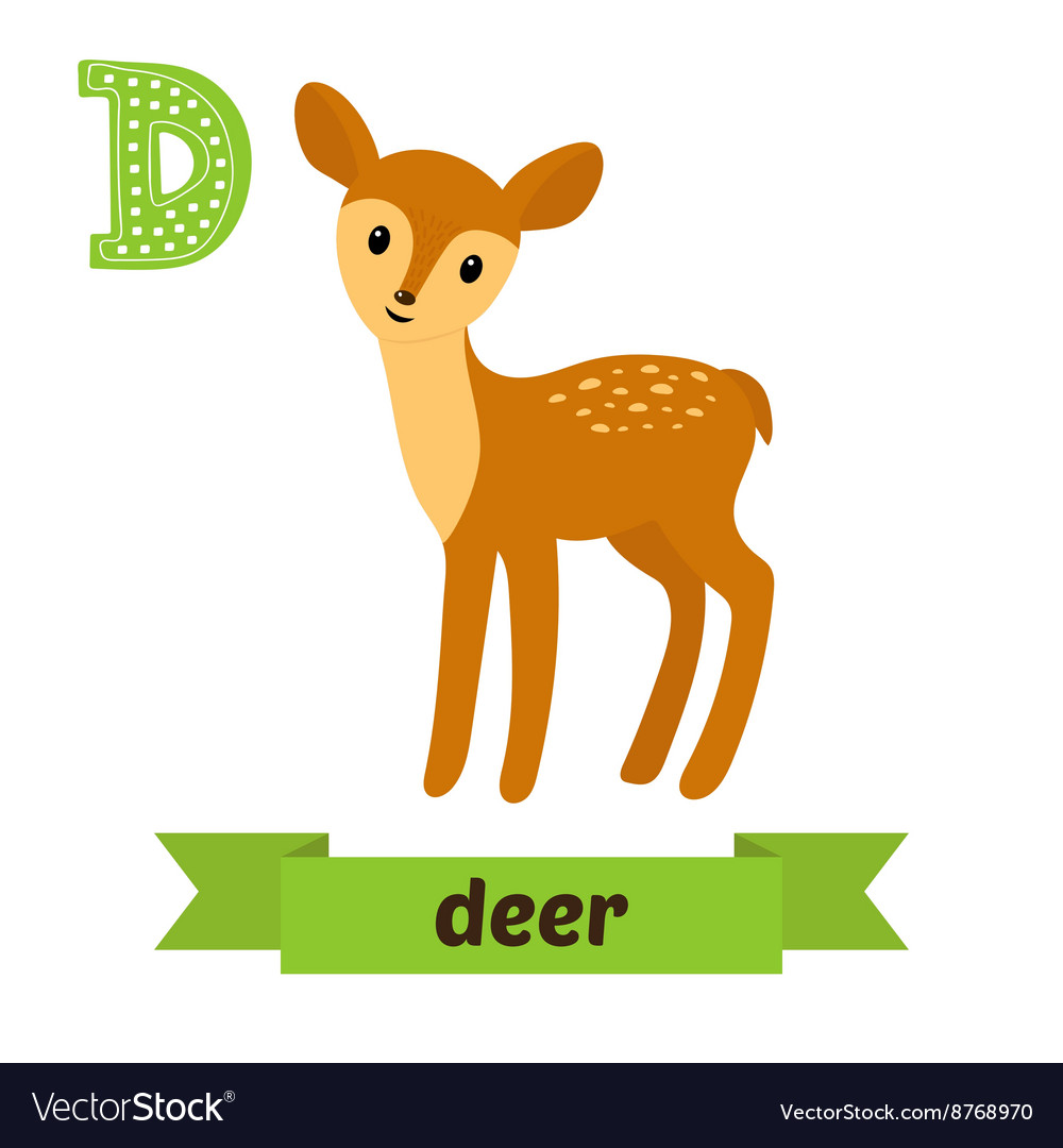 Deer d letter cute children animal alphabet in vector