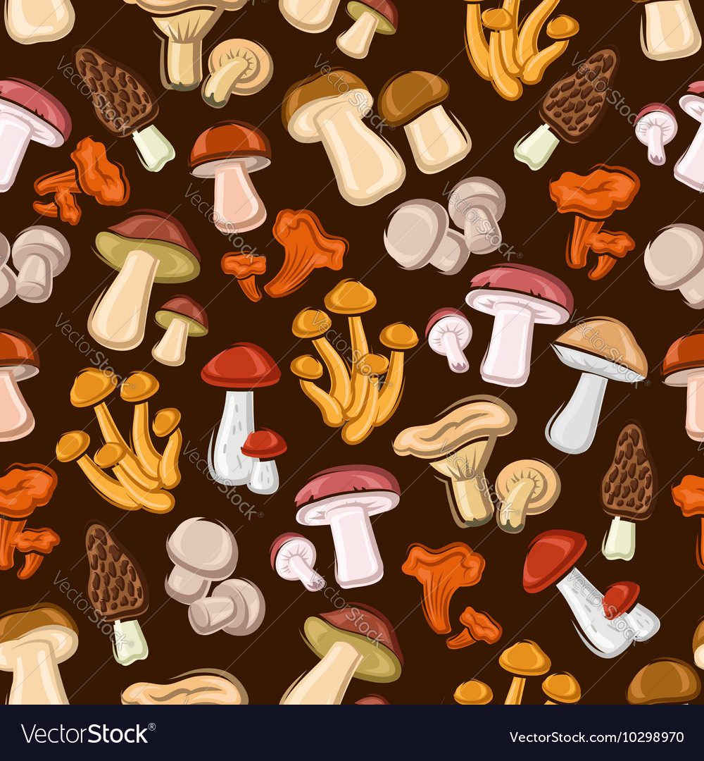 Forest mushrooms seamless background vector