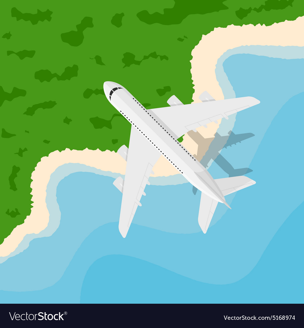 Plane above seaside vector
