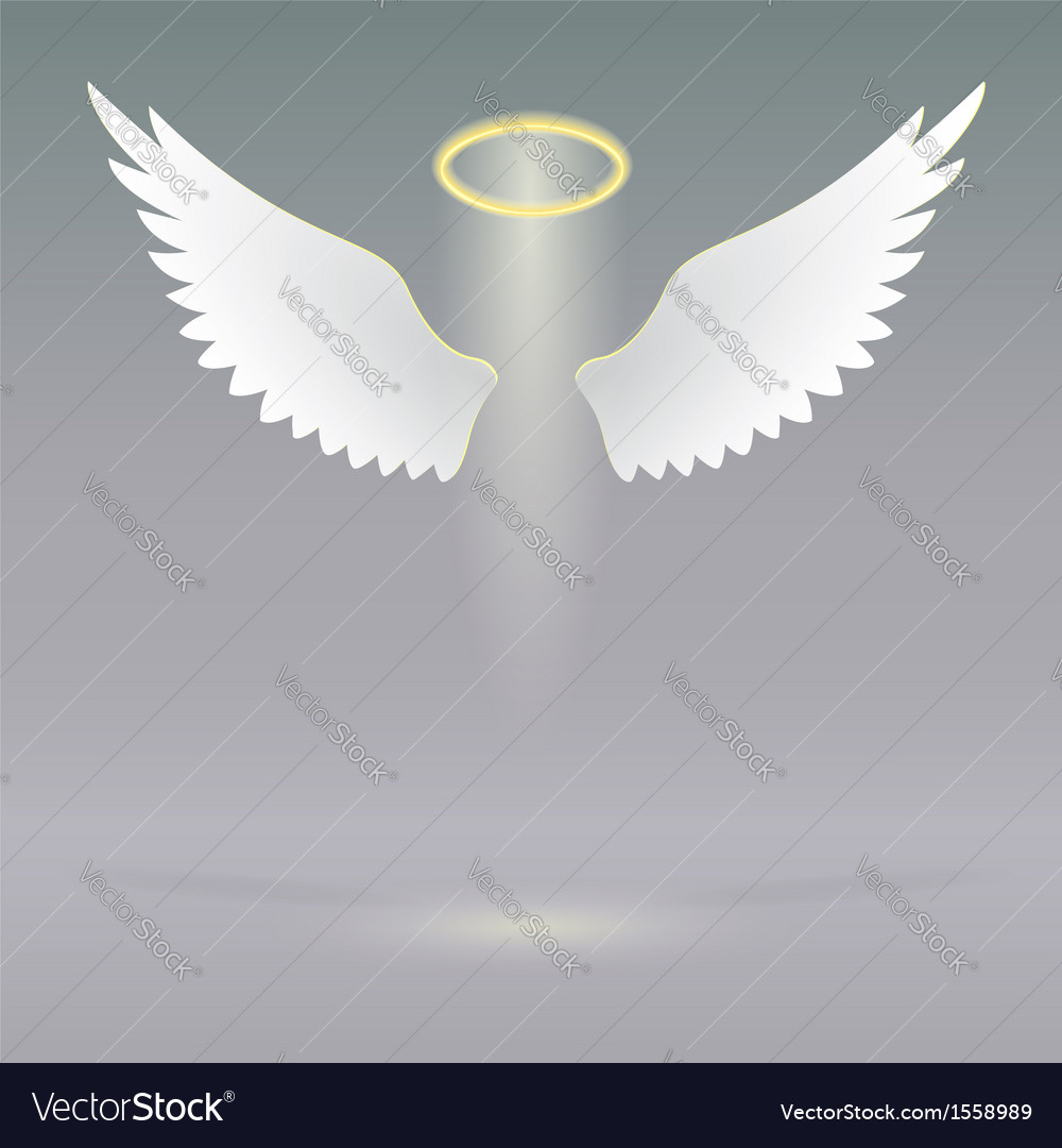 Angel wings on heavenly vector
