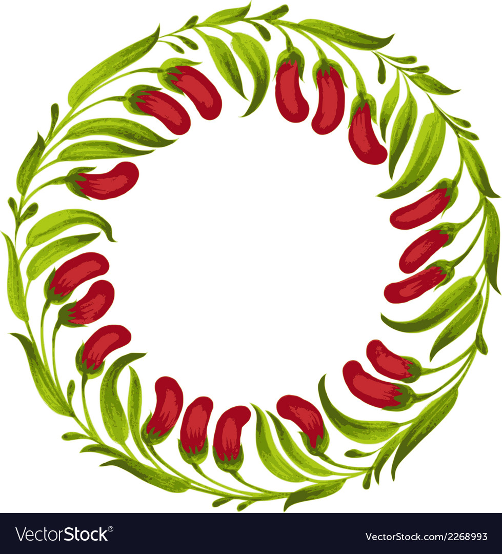 Decorative ornament circle red berries vector