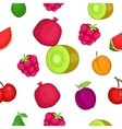 Types of fruit pattern cartoon style vector image
