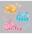 Cute kittens sleeping vector image