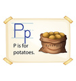 A letter P for potatoes vector image vector image