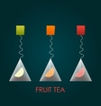 Isolated pyramid of black tea with fruits vector image