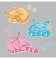 Cute kittens sleeping vector image