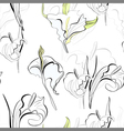 seamless background with calla lilies flowers vector image