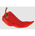 painted red pepper pod lies vector image