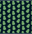 succulent plant seamless pattern vector image