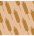 Seamless pattern of cereal ears vector image vector image