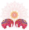 two elephants over mandala pattern vector image
