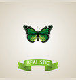 realistic green peacock element vector image
