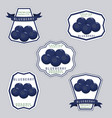the theme blueberry vector image