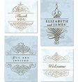 Collection elegant cards vector image