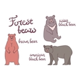 Forest bears set vector image