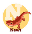 abc cartoon newt vector image