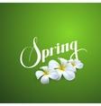 Spring season label vector image