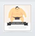 japanese sumo martial arts fighter sumo wrestler vector image