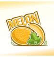 Melon still life vector image