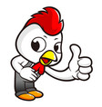 rooster character two thumbs up gesture isolated vector image