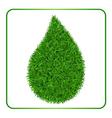 Drop green grass background 1 vector image