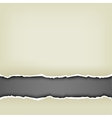wrapped paper background vector image