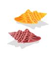 Two sea shells vector image
