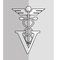 veterinarian related icons image vector image