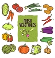 Vegetable Sketch Set vector image