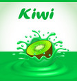 a splash of fruit juice kiwi vector image