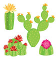 -of-different-cactus-with-flowers vector image