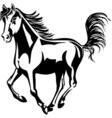 horse runs vector image