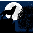 Wolf on stone in the night vector image