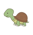 cute turtle pet vector image