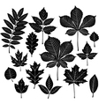 set of silhouette leaf vector image