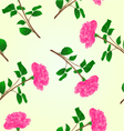 Seamless texture pink rose stem with leaves vector image