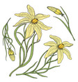 lily with leaves and buds wedding flowers in the vector image