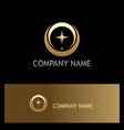 star abstract round technology gold logo vector image
