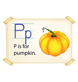 A letter P for pumpkin vector image