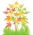 Rastafarian cannibis plant vector image