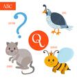 Letter Q Cartoon alphabet for children Quail vector image