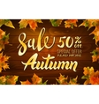 autumn special sale vintage typography vector image